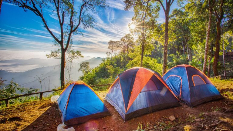 Summer Boy Camps Journey to Manhood